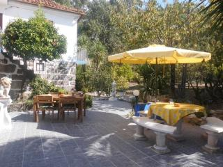 Charming 5 bedroom Guest house in Lousa - Lousa vacation rentals