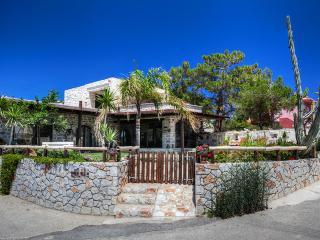 Villa Minoa in Marathi, 5m Away from a sandy Beach - Akrotiri vacation rentals