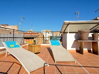 2 Palma Penthouse at 850mts from beach - Palma de Mallorca vacation rentals