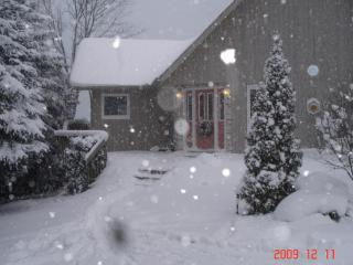 3 bedroom Chalet with Deck in Carlton Place - Carlton Place vacation rentals