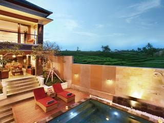 Lea, Luxury 3 Bed Villa Rice Fields View Tanah Lot - Abang vacation rentals