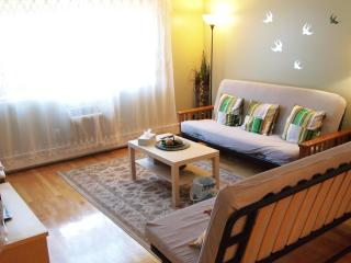 Newton Safe, Clean and Cozy 2-Bedroom Apartment - Newton vacation rentals