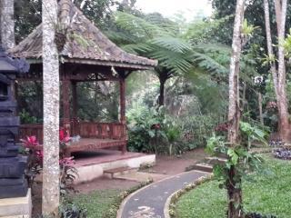 Bali Birds Nest Sanctuary - A retreat hideaway - Tampaksiring vacation rentals
