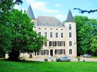 Nice Chateau with Balcony and A/C - Belflou vacation rentals