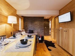 Nice 2 bedroom Condo in Les Deux-Alpes with Internet Access - Les Deux-Alpes vacation rentals
