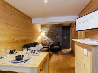 2 bedroom Apartment with Internet Access in Les Deux-Alpes - Les Deux-Alpes vacation rentals