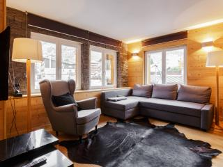 Comfortable 2 bedroom Les Deux-Alpes Apartment with Internet Access - Les Deux-Alpes vacation rentals