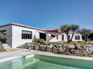 Spacious villa close to Aix en Provence - Saint-Cannat vacation rentals