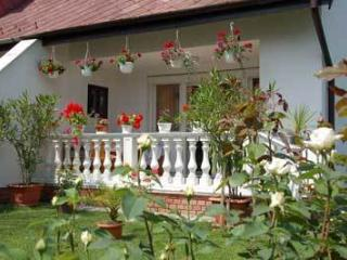 Biro Vendeghaz - Gyor vacation rentals