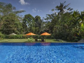 Villa Shinta Dewi Ubud, Four bedroom villa in Ubud - Ubud vacation rentals