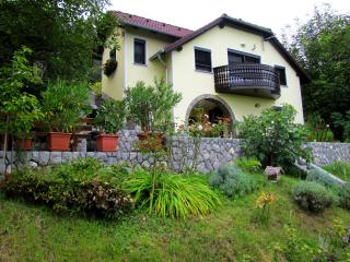 Vineyard cottage - Zidanica Pokorny - Novo Mesto vacation rentals