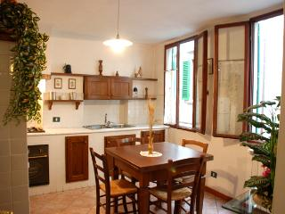 Classic Italian home away from home, Arno river - Florence vacation rentals