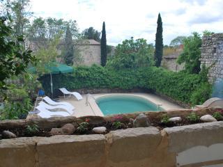 Nice 6 bedroom House in Garrigues-Sainte-Eulalie - Garrigues-Sainte-Eulalie vacation rentals