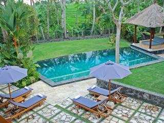 Villa Pursang By Balion - Pererenan vacation rentals