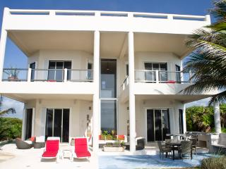 Lovely Villa with Internet Access and Television - Chacalal vacation rentals