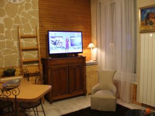 Joli appartement au Centre de Cauterets - Cauterets vacation rentals