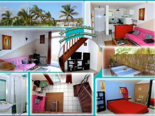 Cozy 1 bedroom Condo in La Saline les Bains with Internet Access - La Saline les Bains vacation rentals