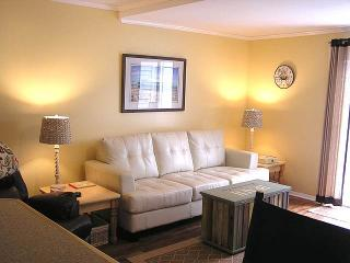235 Driftwood Villa - Wyndham Ocean Ridge - Edisto Beach vacation rentals