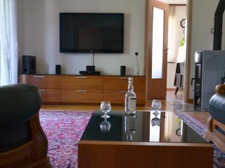 Apartments Lenardic Bled - Bled vacation rentals