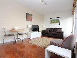 Soho Apartment - Central London - London vacation rentals