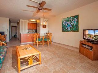 Maui Vista #1322 - Kihei vacation rentals