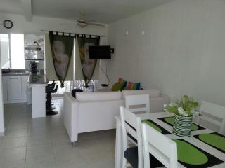 European Syle House in Los Olivos, Playa del Carmen - Aguascalientes vacation rentals