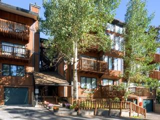 Four O`Clock Lodge #15C - Breckenridge vacation rentals