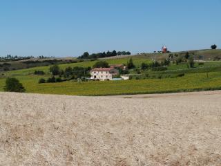 Gites des Camparros : Gite des Tournesols - Nailloux vacation rentals