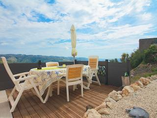The Olive Trees - Gattieres vacation rentals