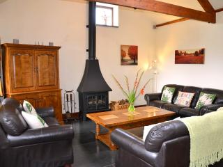 Lovely Barn with Deck and Internet Access - Lostwithiel vacation rentals
