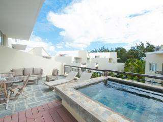 Penthouse with plunge pool opp. the beach - Pereybere vacation rentals