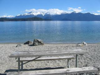 Beautiful Cottage with Deck and Towels Provided - Manapouri vacation rentals