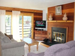 TR203 Great Condo w/Wifi, Clubhouse, Mountain Views, Fireplace - Silverthorne vacation rentals