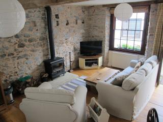 River Garden Cottage - Buckfastleigh vacation rentals