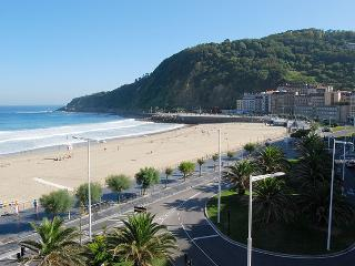 INTERNATIONAL::Seaviews, surf, pintxos! - San Sebastian - Donostia vacation rentals