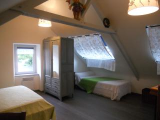 Nice Gite with Internet Access and DVD Player - Saint Aaron vacation rentals