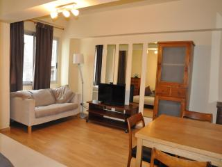 Bright 2 bedroom Apartment in Santa Cruz de Tenerife - Santa Cruz de Tenerife vacation rentals