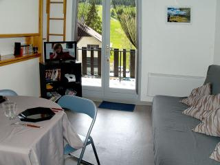Bright Seyne les Alpes Studio rental with Internet Access - Seyne les Alpes vacation rentals