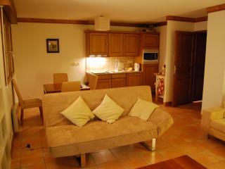 Charming Alpine Apartment - Saint Gervais les Bains vacation rentals