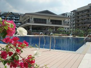 Midrise condo close to Manila Airport - Samar vacation rentals