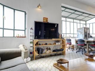 3 bedroom + roof terrace off Ben Gurion Blvd.! - Tel Aviv vacation rentals