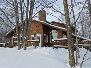Bear Necessities - Upper Peninsula Michigan vacation rentals