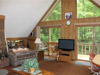 Located at Base of Powderhorn Mtn in the Western Upper Peninsula, A Trailside Home with Cozy Décor & Large Living Room - Bessemer vacation rentals
