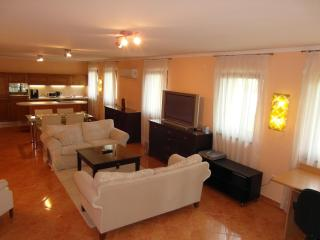 Luxury Apartment in Székesfehérvár 140 m2 3 Bedroom - Szekesfehervar vacation rentals