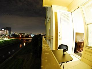Medical center Pleasant apartment the Closest one - Houston vacation rentals