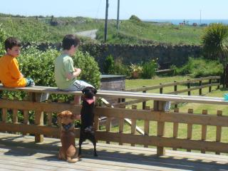 """Sea View Cottage"" Beach,Golf, Fishing,Tennis,Football Pitches 100 mts,Play area - Rosslare vacation rentals"