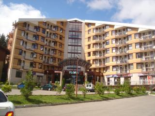 Large luxury apartment (79.89sqmt) Flora Apartment - Borovets vacation rentals
