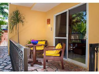 ONE BLOCK TO BEACH, APARTMENT, POOL, BBQ, OFFICE, RELAXING, QUITE, FREE WI FI - Puerto Morelos vacation rentals