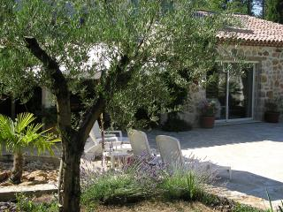 "Attractive Provencal ""Mas"" in Callian - Callian vacation rentals"