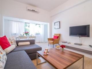 3 BD modern near Gordon beach! - Tel Aviv vacation rentals